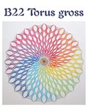 DS B22 Torus gross