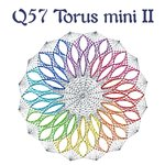 DS Q57 Torus mini II