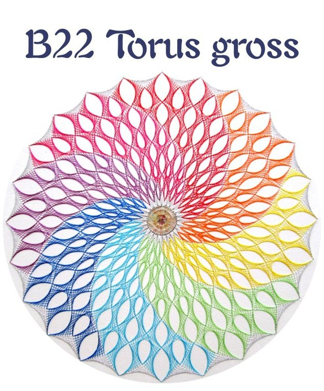 DL B22 Torus gross