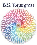 DL B22 Torus gross English version
